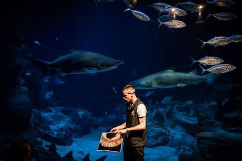 aquarium mare nostrum theme park montpellier tourist office