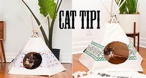 Tipi Pour Chat : tipi cat ~ Teatrodelosmanantiales.com Idées de Décoration