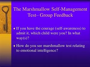 Emotional intelligence from self awareness to relationship ...