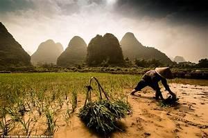 Photographer Scott Gable documents the struggle of Asian ...