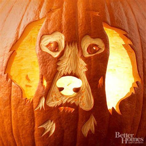 puppy pumpkin carving free pumpkin carving stencils of favorite dog breeds dog files