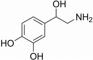Norepinephrine U2013dopamine Reuptake Inhibitor