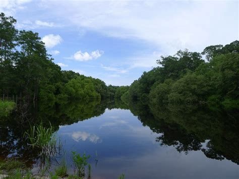 edisto river  counties south carolina sc