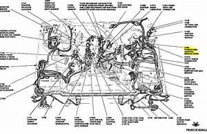 27 2003 Ford F150 Vacuum Hose Diagram