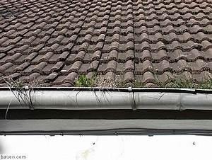 Dach Reinigen Kosten : bei der dachreinigung zu beachten modernisieren umbau ~ Michelbontemps.com Haus und Dekorationen