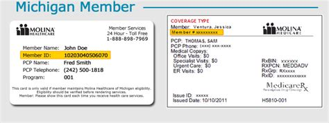 molina provider phone number new member registration