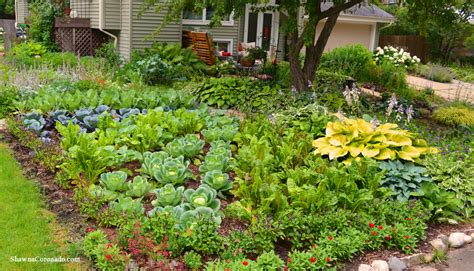 front lawn vegetable garden design coronado