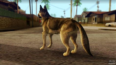 Gta San Andreas Dog Cheat