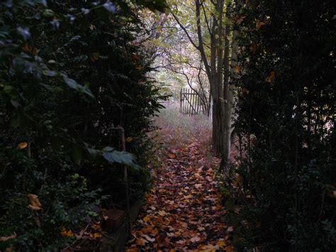 Garten Rückschnitt Im Herbst by Verwunschener Garten Im Herbst Foto Bild Jahreszeiten