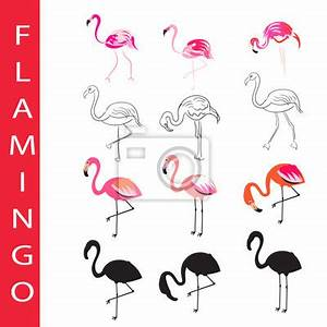 Flamingo Schwarz Weiß : flamingo vektor set cartoon umriss und silhouette hand gezeichnet fototapete fototapeten ~ Eleganceandgraceweddings.com Haus und Dekorationen