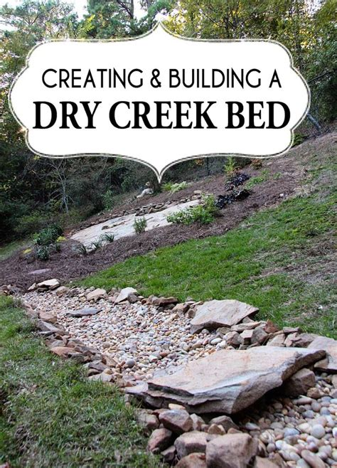 dry creek bed  beauty  drainage