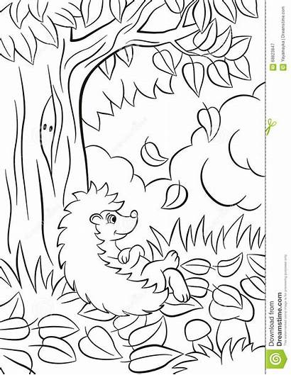 Coloring Fall Pages Hedgehog Tree Leaves Autumn