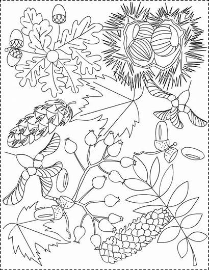 Coloring Pages Autumn Adults Nicole Princess