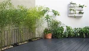 Jard U00edn Vertical Con Bamb U00fas En Patio Interior