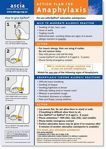 Ascia Action Plan For Anaphylaxis  General  For Use With
