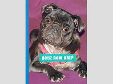 The Inky Paw Pug Gifts, Pug Cards, Pug Greeting Cards Pug