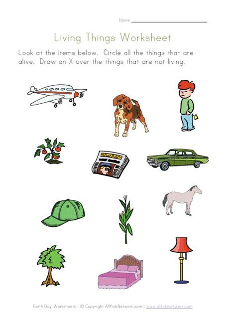 living and nonliving worksheets for preschool living and