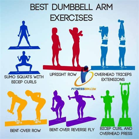 pin  wwwhealthdigeztcom  exercise tips dumbbell