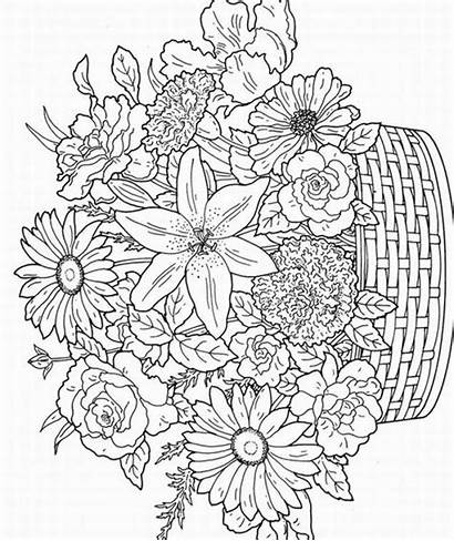 Coloring Adult Pages Flowers