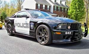Transfomer Saleen Mustang for Sale on Ebay - The Mustang Source