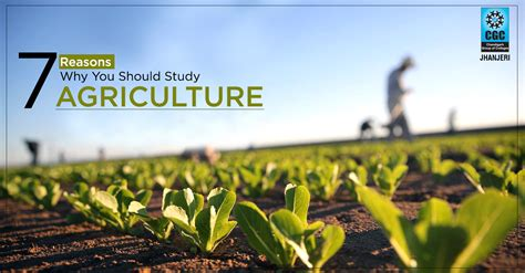 7 Reasons Why You Should Study Agriculture  Cgc Blog