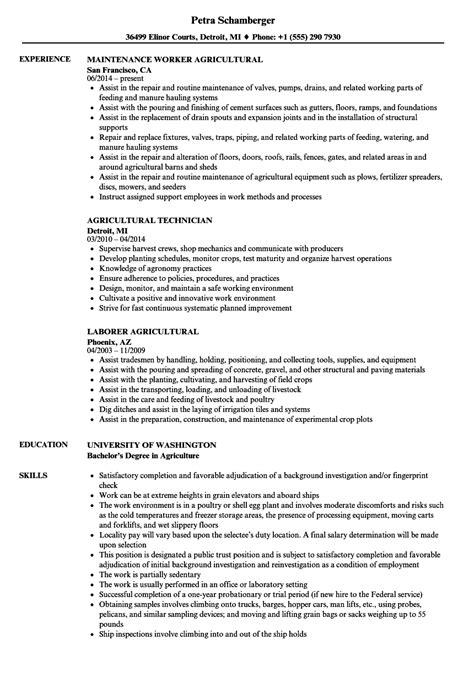 resume format for agricultural marketing agricultural resume sles velvet