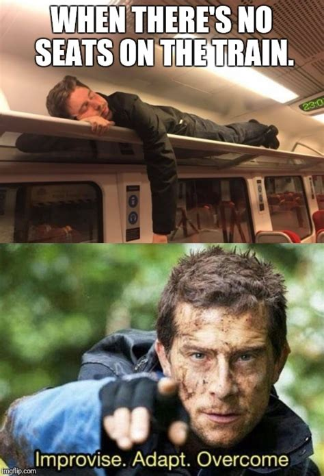Halerious Memes - image tagged in funny memes funny meme funny memes bear grylls hilarious memes imgflip