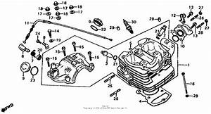 Cylinder Head For 1983 Honda Xl185