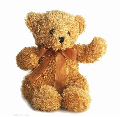 Teddy Bear Clipart Transparent Clip Freepngimg Resolution