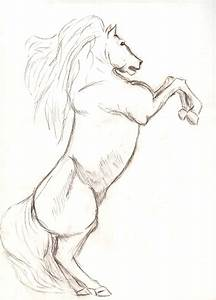 horse sketch by b1200k3 on DeviantArt