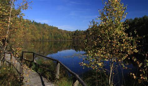 mueritz nationalpark wildes deutschland camperdays blog