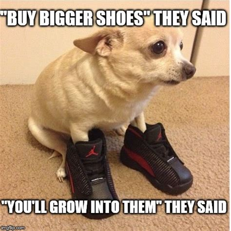 Buy All The Food Meme - buy all the shoes meme 28 images buy the shoes my memes pinterest buy all the shoes meme 28