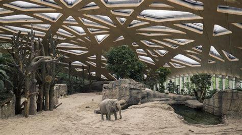 zoo exhibits