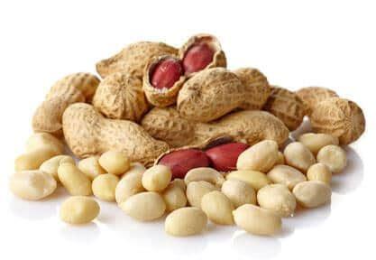 food allergies  adrenal fatigue solution
