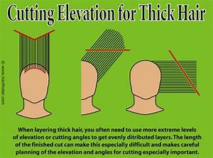 Technique For Layering Thick Hair And Hair Cutting Elevation