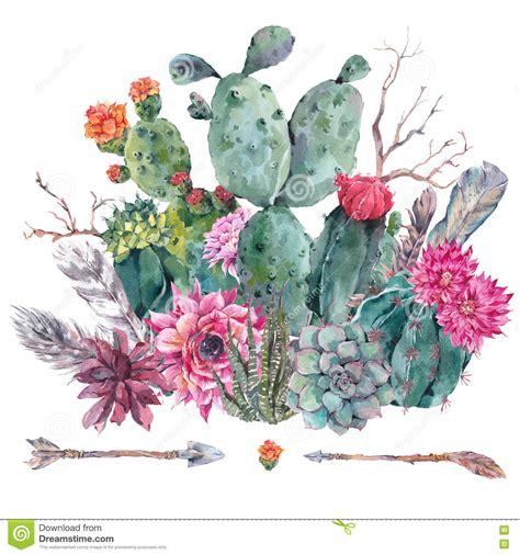 watercolor cactus succulent flowers stock illustration