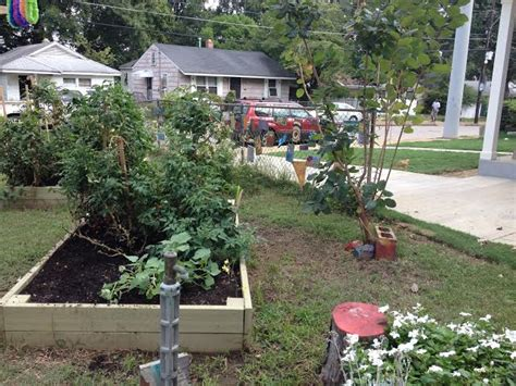 Day Two Carpenter Art Garden  Volunteer Odyssey