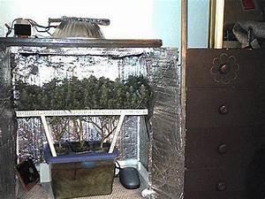 Beautiful la culture indoor pour dbutants pour bien for Mini chambre de culture cannabis