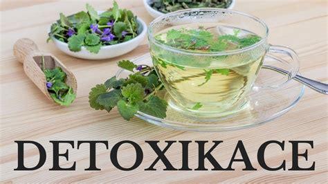 Bylinná detoxikace organismu (čištění organismu) - Zdraví ...