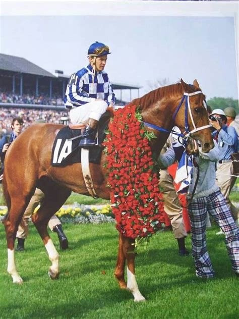 secretariat horse race derby kentucky triple crown horses racing winner roses winners wearing famous racehorse thoroughbred proudly history pretty wanna