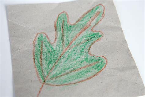 comment tracer des feuilles darbre cabane  idees