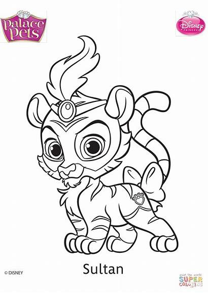 Palace Pets Coloring Pages Disney Sultan Drawing
