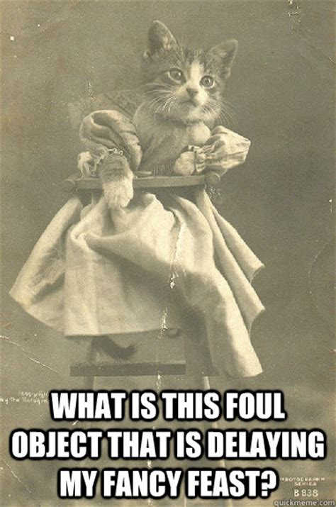 Fancy Feast Meme - what is this foul object that is delaying my fancy feast 1900s cat quickmeme