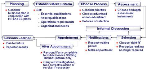 audit  staffing activities