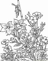 Garden Coloring Pages Printable Opper Natural Flower Flowers sketch template