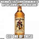 Captain Morgan Meme - captain morgan meme generator imgflip