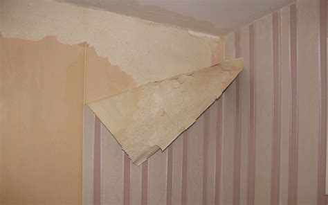 wallpapers  painting  wall leakage problem