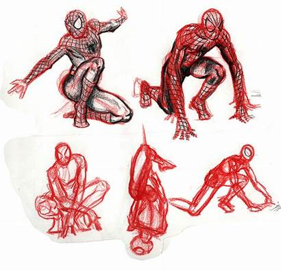 Spider Amazing Drawing Sketching Friends Much Illustrator