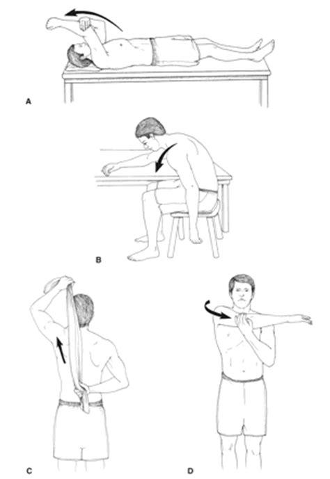 Supraspinatus Tendinopathy - Physiopedia