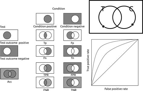 Categorical Syllogism Venn Diagrams Eio
